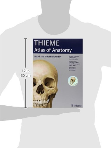 Head and Neuroanatomy (THIEME Atlas of Anatomy): Michael Schuenke ...