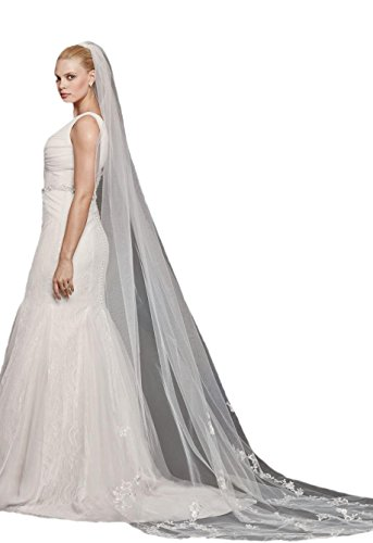 Passat Pale Ivory Single-Tier 3M Cathedral Tulle Bridal Veil with Floral Lace Appliques DB100 by Passat