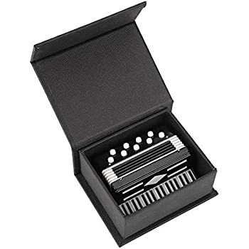 Amazon.com: Bewinner Modelo de instrumento musical en ...
