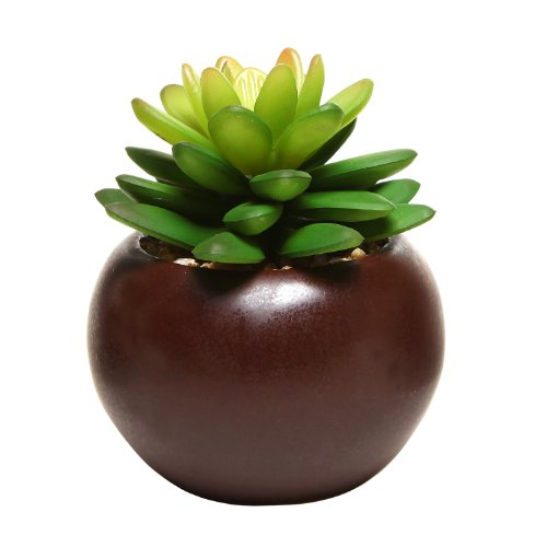Large Product Image of Potted Artificial Mini Succulent Plants, Set of 3