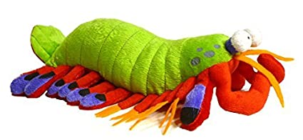 Amazon Com Adore 14 Harlequin The Peacock Mantis Shrimp Plush