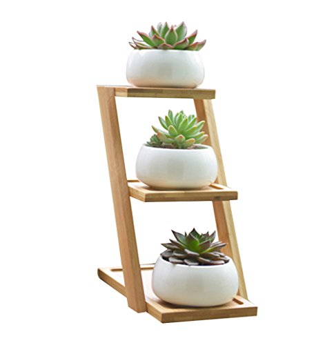 LANKER 3.25 Inch Round White Ceramic Succulent Planter Pots Modern Cactus Pots Container with 3 Tier Bamboo Tray - Pack of 3 (Round 3.2 Inch) ()
