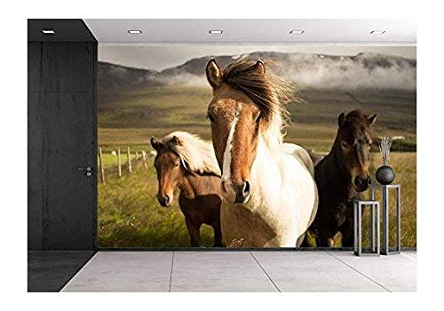 wall26 Horses in the Field - Removable Wall Mural | Self-adhesive Large Wallpaper - 66x96 inches