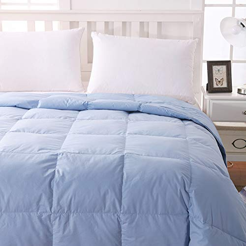 WhatsBedding 100% Cotton Down Comforter Blue Goose Duck Down and Feather Filling,Hypoallergenic. All Season Duvet Insert or Stand-Alone Comforter Blue (Queen or Full)