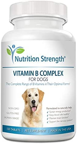 Nutrition Strength Vitamin B for Dogs, Complete B Complex for Dogs, Promote Blood Cell Nervous System Health, Help Sustain Cellular Energy Production Maintain Brain Function, 120 Chewable Tablets