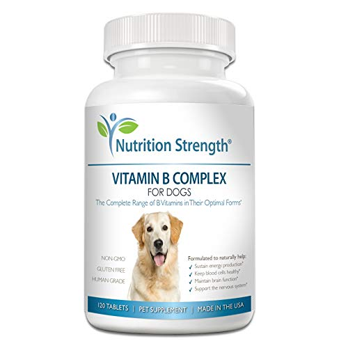 Amazon.com: Nutrition Strength Vitamina B para perros ...