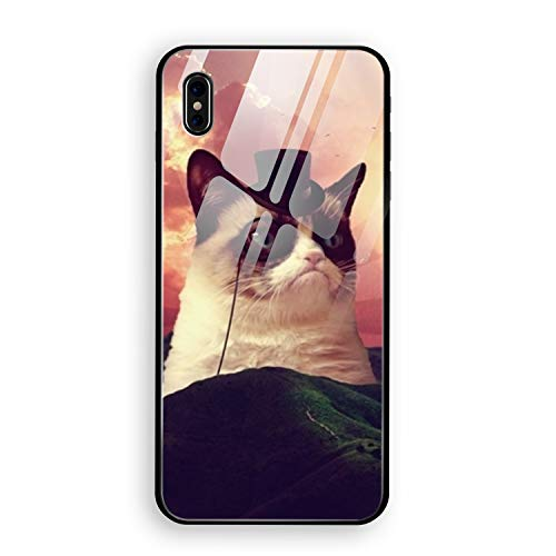 (iPhone X Case, Tempered Glass Cat Grumpy Cat Hat Hill Landscape Clouds Birds Mirror Bumper Cover for iPhone X)