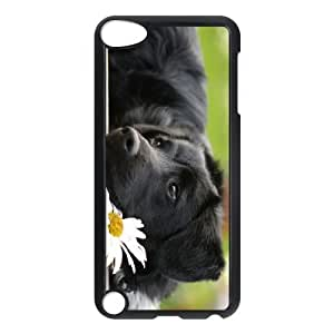 LZHCASE Design Phone Case Cute Dog For Ipod Touch 5 [Pattern-1]
