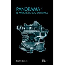 Panorama : le marché du gaz en France (French Edition)