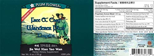 Plum Flower Economy Size - Free and Easy Wanderer - Xiao Yao Wan - 1,000 Teapills by Plum Flower (Image #2)