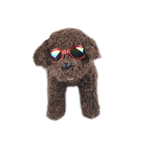 I-Fashion Pet Sunglasses for Travel, Skiing,Surfing,Driving with Fashionable Waterproof Foldable UV Anti-Scratch to Protect Pet Eyes - Sunglasses I Ltd