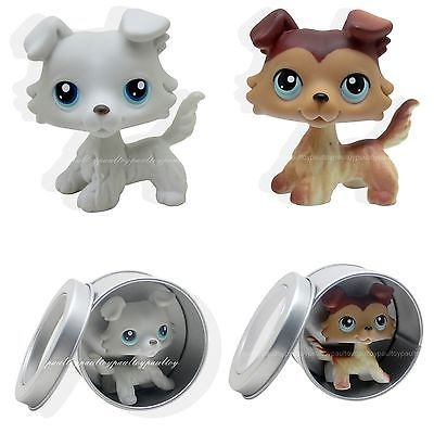 Funny Triplet Costume Ideas - 2pcs #363 #58 Rare Littlest Pet Shop Gray Brown Collie Dog Puppy Blue Eyes LPS
