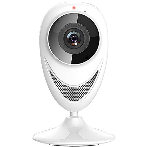 Internet Video Security Monitoring - 9