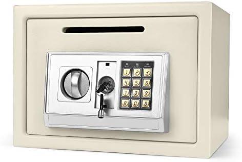 Caj/ón de Almacenamiento Flexzion Caja de Efectivo de Acero Fuerte Port/átil con Portamoneda Interior y 2 Llaves Caja de Seguridad para Dinero con Cerradura y Bandeja Extra/íble de 9 Compartimentos