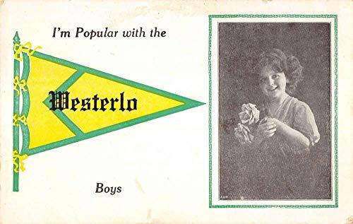 Westerlo New York Little Girl Roses Pennant Flag Antique Postcard K432016