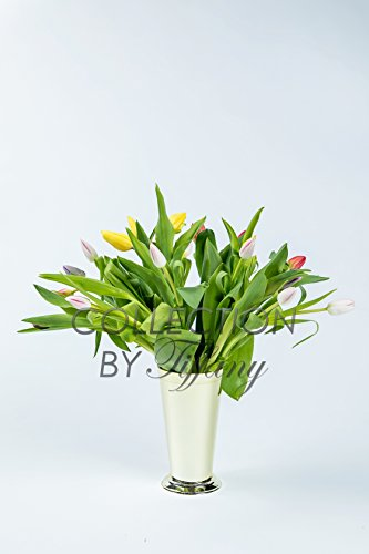 Tulip Fresh Festive Color 10st/bunch Beautiful Wedding Event Everyday Occcasion Gift In Keepsake Container Vase Trumpet Bling Bling (Gold Jute Plastic) ()