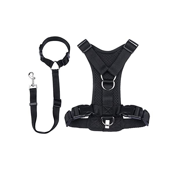 Ohkuu Dog Safety Vest Harness Sets,Soft Mesh Breathable Dog Travel Safety Vest Harness with Adjustable Seat Belt Strap… Click on image for further info.