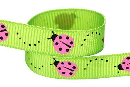 HipGi (Pink Ribbon Costumes)