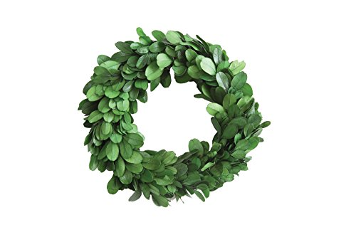 Creative Co-op DA5819 Round Boxwood Wreath, 6 Inch