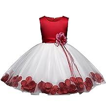 ADHS Infant Newborn Kids Baby Girls Flower Wedding Gowns Princess Tutu Dress