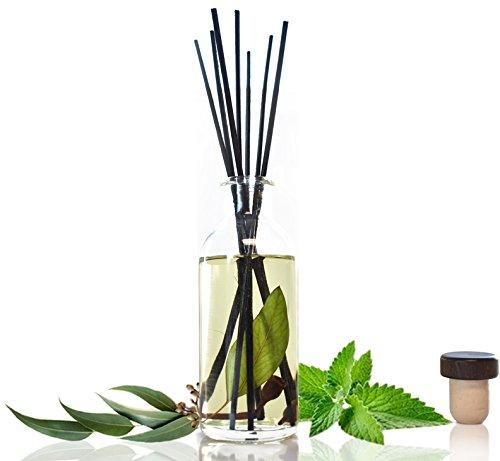 Urban Naturals Eucalyptus Spearmint Stress Relief Reed Diffuser Oil & Reed Sticks Gift Set Air Freshener for Bathroom, Kitchen, Bedroom | Home Gift Idea. Vegan.
