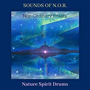 Sounds Of Non-Ordinary Reality (N.O.R)