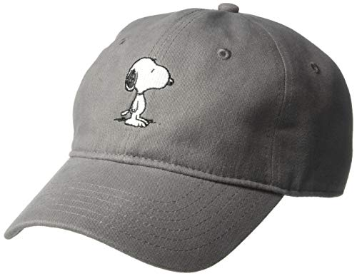 Peanuts Men's Snoopy and Charlie Brown Baseball Caps, Gray, One Size -