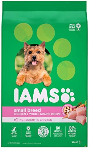 Iams Proactive Health Small Breed Adult Dry Dog Food