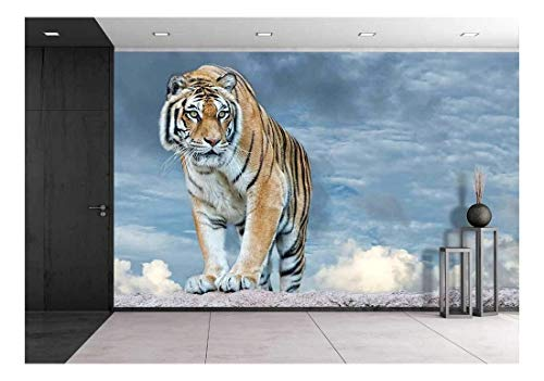 - wall26 - Siberian Tiger Ready to Attack Looking at You in The Rocks Background - Removable Wall Mural | Self-Adhesive Large Wallpaper - 66x96 inches