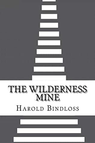 book cover of The Wilderness Mine