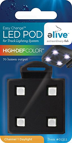 Color Led Track Lighting in US - 2