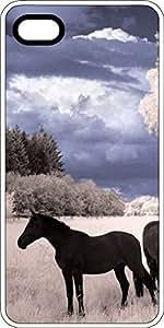 Black Stallion In Snowy Field White Plastic Decorative iphone 4s Case