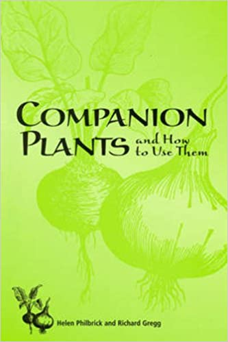 How some plants grow better near some companions than they do when alone.