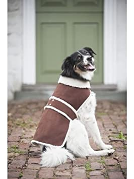 Fashion Outdoor Dog Shearling Coat