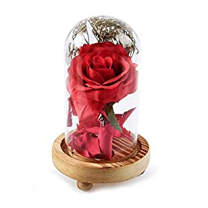 Jinxuny Glass Artificial Rose Dome on a Wooden Base for Home Decor Holiday Party Wedding Anniversary 26