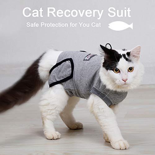 Walmeck- Pet Cat Recovery Suit After Surgery Wear Abdominal Wounds Skin Disease E Collar Alternative Cotton Suit