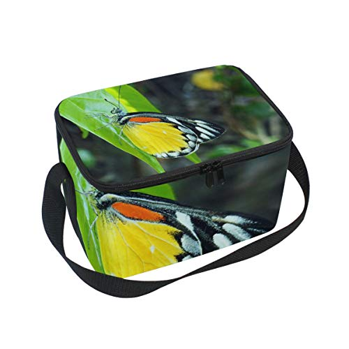 Lunch Bag Beauty Nature Butterfly Green Leaf Womens Insulated Lunch Tote Zipper Kids Lunch Box
