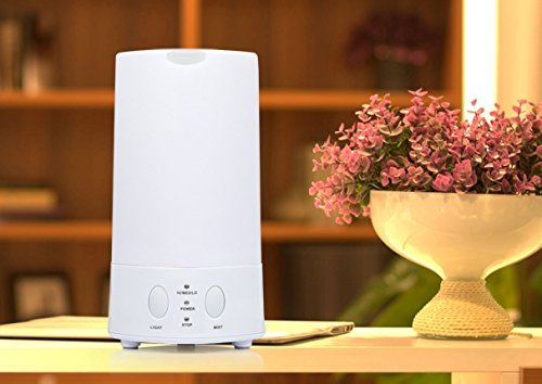 Lagute Diffuser Aromatherapy Humidifier Changing