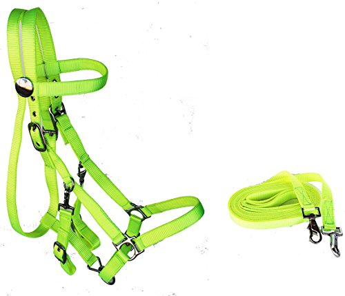 - English Western Horse Nylon Bridle Halter Bridle Combo Pull REINS Lime 60111LGC