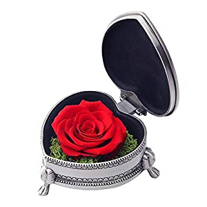 hey June Preserved Rose Flower with Exquisite Metal Box, Unique Gifts for Women Wife Grandma Girlfriend Mom, for Her, (Red Rose)