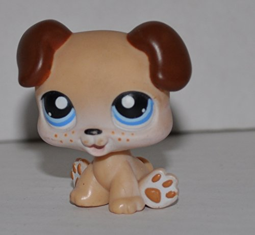 Puppy #143 (Tan, Blue Eyes) - Littlest Pet Shop (Retired) Collector Toy - LPS Collectible Replacement Single Figure - Loose (OOP Out of Package & Print)