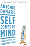 Self Comes to Mind: Constructing the Conscious Brain