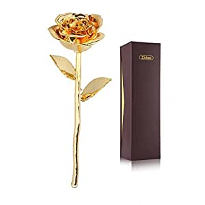 ZJchao Gold Rose, Premium Long Stem Gold Dipped Real Rose Flower, Mothers Day Gift, Birthday, Anniversary Gift to Her