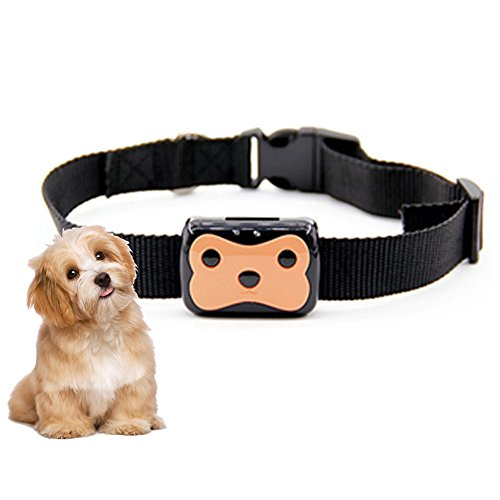 JARAGAR Pet GPS Tracker, Waterproof GPS + LBS Locator Mini Pet Locator GPS Collar Tracker GPS Locator Pet Tracking Device Realtime Tracking Remote Monitor with Adjustable Buckle Collar for Cats Dogs