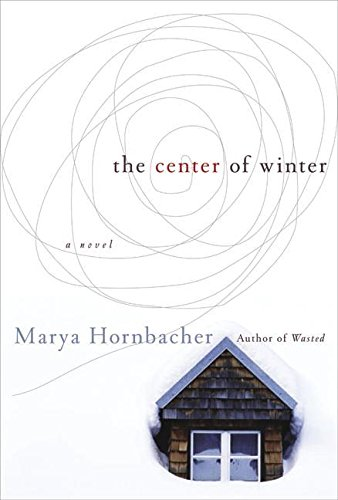 Read Online The Center of Winter: A Novel PDF