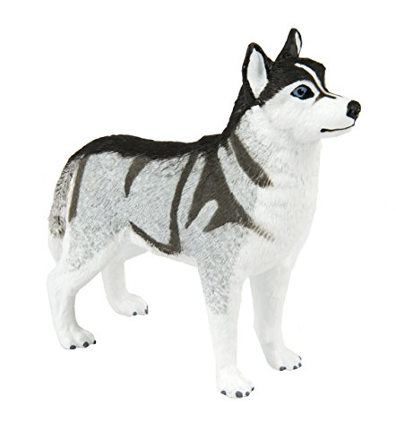 (Safari Ltd. Siberian Husky XL - Realistic Hand Painted Toy Figurine Model - Quality Construction from Phthalate, Lead and BPA Free Materials - For Ages 3 and Up)