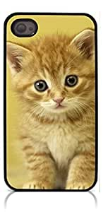 HeartCase Hard Case for Iphone 4 4G 4S (Cat Cute )