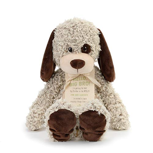 DEMDACO Big Brother Puppy Soft Brown 13 inch Plush Material Stuffed Animal Figure Toy (Animal Brown Stuffed)