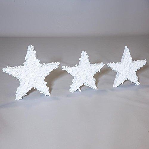 TCDesignerProducts White Stars Parade Float Kit, Set of 3 Stars ()