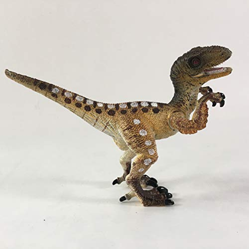 ZXLZKQ Jurassic Dinosaur Educational Dinosaur Toys for Toddlers and Older Kids Boys and Girls - M5007B by ZXLZKQ